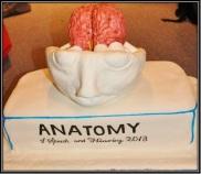 anatomically_correct1